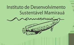 Análise Geoespacial, Ambiente e Território Amazônico