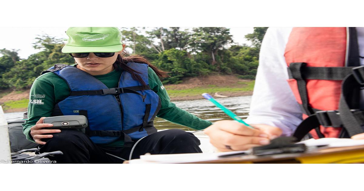 Instituto Mamirauá abre inscrição para bolsa de pesquisa na Amazônia