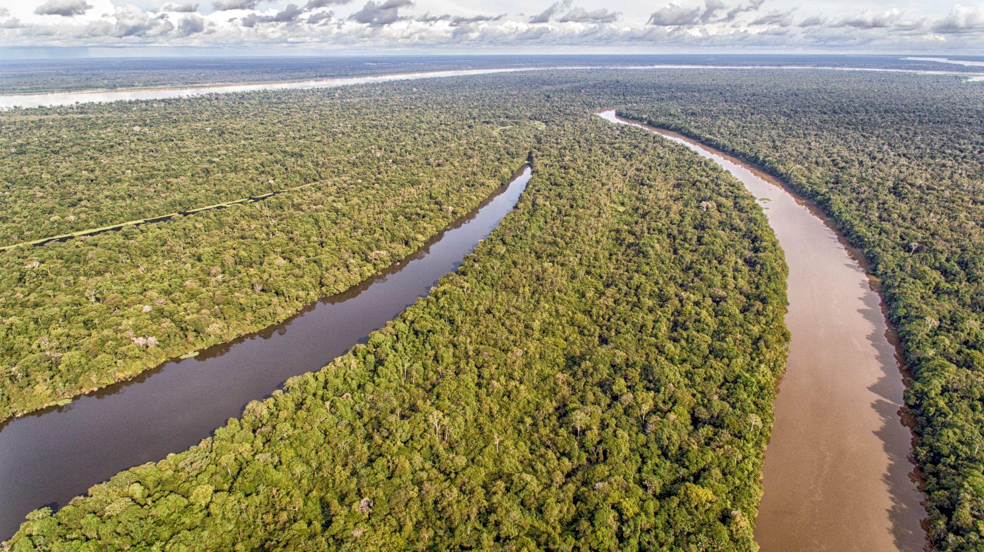 Seja um pesquisador na Amazônia!