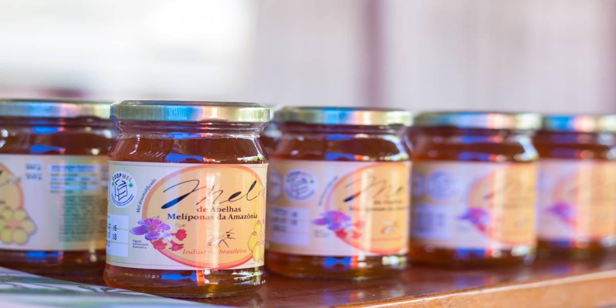 Durante a pandemia de coronavírus cresce o consumo de mel e outros produtos de abelhas nativas no Amazonas