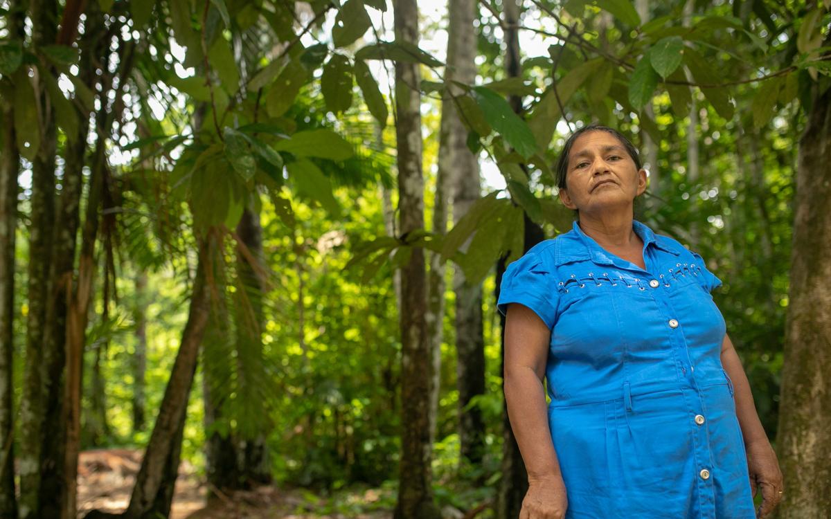 Pesquisa faz levantamento de plantas utilizadas por parteiras tradicionais da Amazônia