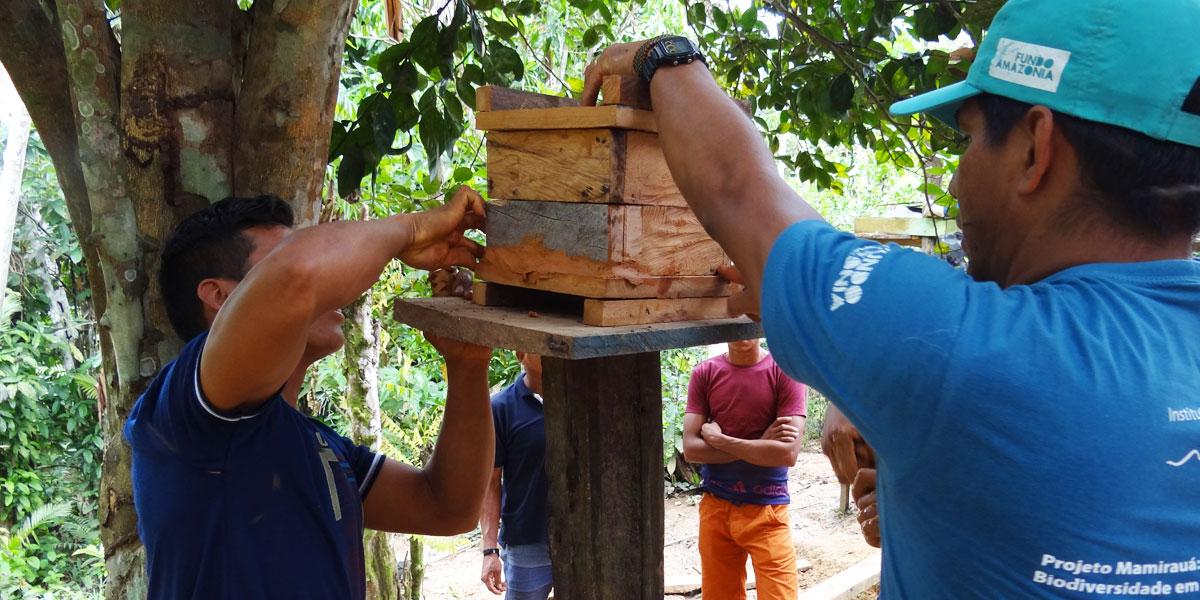 Comunitários participam de oficina de criação de abelhas nativas da Amazônia